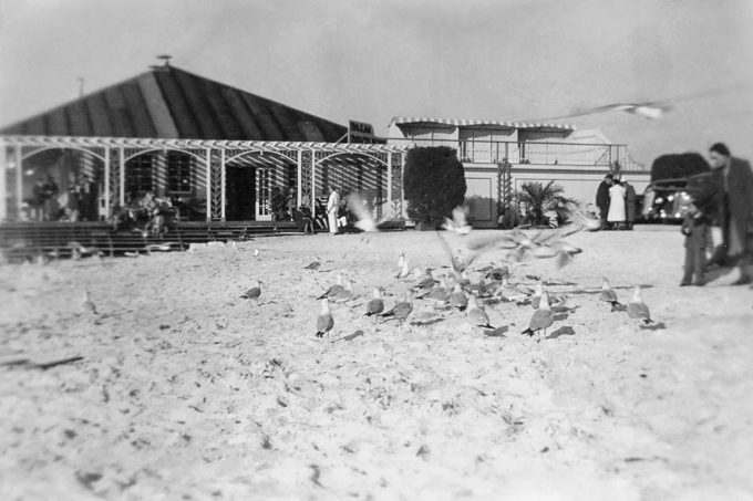 Palm Pavilion Historic Photo #40