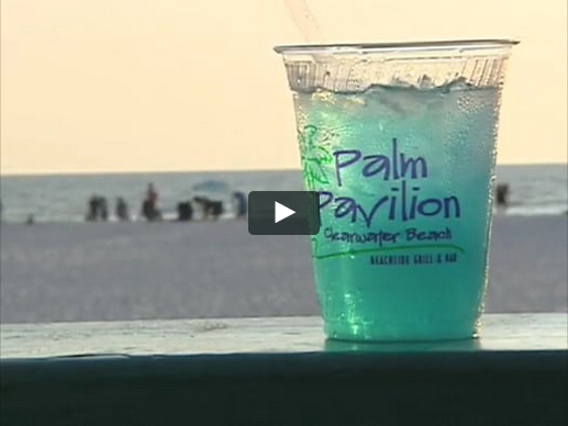 Palm Pavilion® Video - Bar
